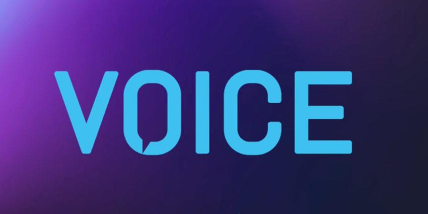 VOICE Summit 2020, Virtual Edition Roundup